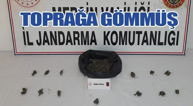 Mersin Tarsus'ta Tutuklu Bulunan Şahıs, Ürettiği Uyuşturucu Maddeyi Cezaevine Girmeden Önce Poşetle Toprağa Gömmüş