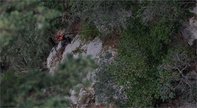 Mersin Erdemli'de İtfaiye Ekipleri Kayıp Keçiyi Sahibine Kavuşturdu