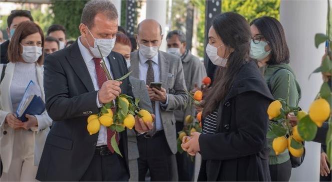 """Başkan Seçer'den Mezitli Küçük Sanayi Sitesi Açıklaması: """"Halka Rağmen Bir Şey Yapamazsınız"""""""