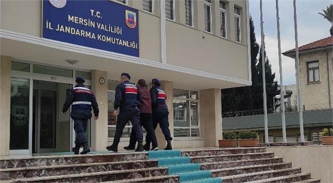 DEAŞ Terör Örgütü Üyesi 3 Şüpheli Şahıs Gözaltına Alındı