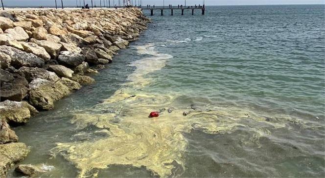 Mersin Denizinde Görülen Renk Değişiminin Nedeni Belli Oldu
