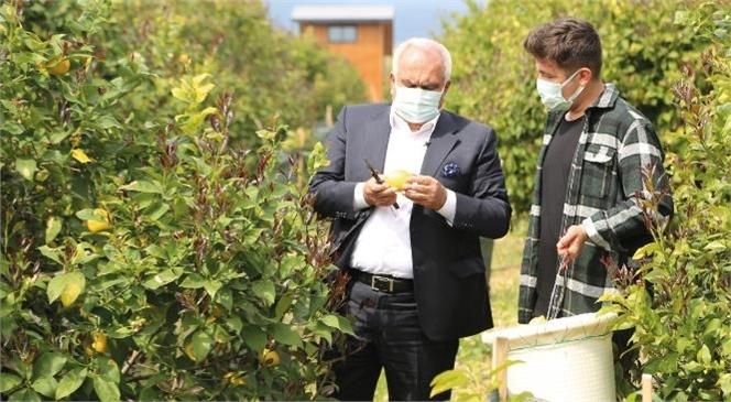 Güvenlik Görevlisiyken Dijital Dönüşüm Projesine Katılan Mersinli Çağrı Sağırlar, Pandemi Sürecinde Gösterdiği Başarıyla Görenlere Umut Oluyor
