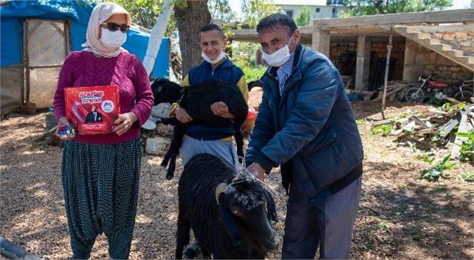 Mersin Erdemli'de Yaşayan Özel Gereksinimli Adem'e, Başkan Seçer Keçi ve Yavrusunu 23 Nisan Hediyesi Olarak Gönderdi