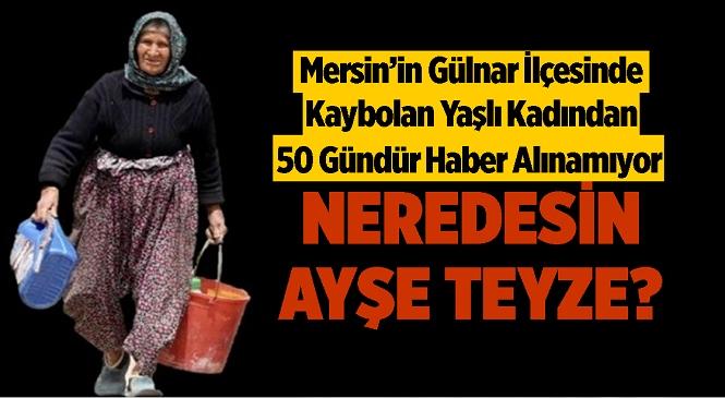 Gülnar İlçesinde Kaybolan 91 Yaşındaki Ayşe Nergiz'den 50 Gündür Haber Alınamıyor