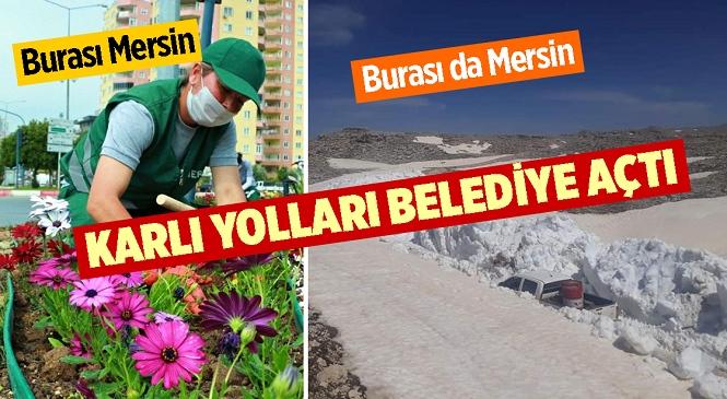 Mersin Büyükşehir, Yörüklerin Karla Kaplı Yayla Yolunu Açıyor