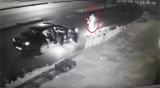 Mersin'de Son Günlerde Sıkça Rastlanan Saksı Hırsızlığına Yenisi Eklendi