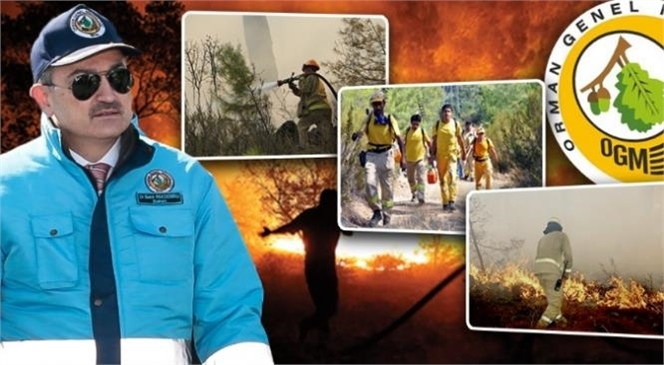 Orman Genel Müdürlüğü Orman Yangınları İle Mücadele ve Ormancılık Faaliyetlerinde Çalıştırılmak Üzere 2 Bin Geçici İşçi Alacak