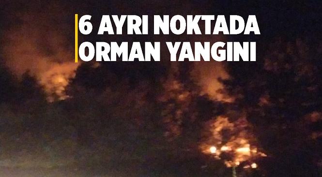 Mersin'in Mezitli İlçesinde Erdemli Otobanı Çevresinde 6 Ayrı Noktada Orman Yangını Çıktı