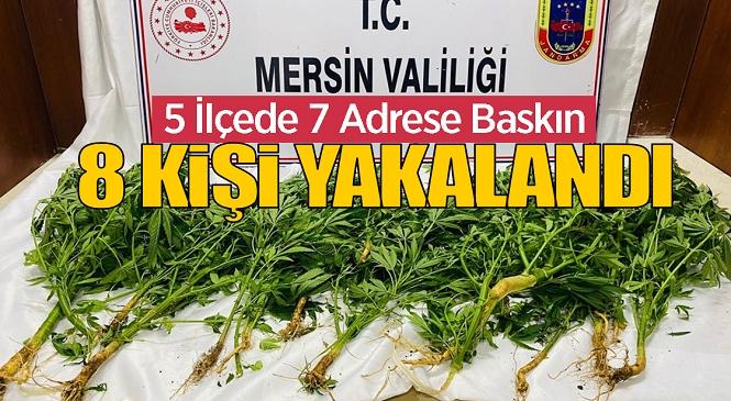 Mersin'in 5 İlçesinde Yasadışı Kenevir Ekimi, Uyuşturucu Madde İmal ve Ticareti Operasyonu Yapıldı! Baskınlarda Çok Sayıda Şüpheli Gözaltına Alındı