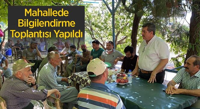 Mersin'de Üreticilerin Kabusu Akdeniz Meyve Sineği! Tarsus'ta Üreticilere Mücadele Konusunda Bilgilendirme Yapıldı