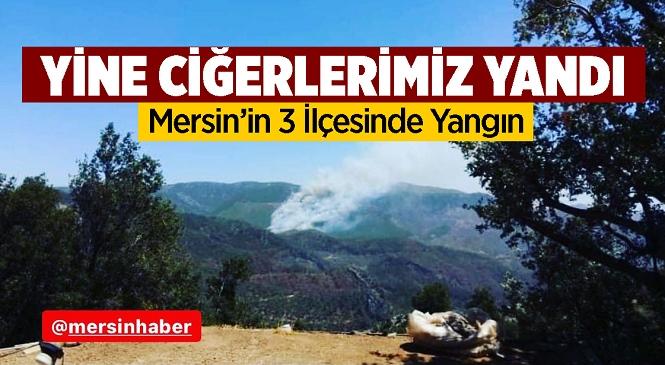 Mersin'in Aydıncık Ve Bozyazı İlçelerinde Orman Yangını Çıktı, Tarsus İlçesindeki Bahçe Yangını İse Korkulu Anlar Yaşattı