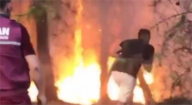 Tatil İçin Gittiği Antalya'da Mersinli Genç Yangına Müdahale Etti