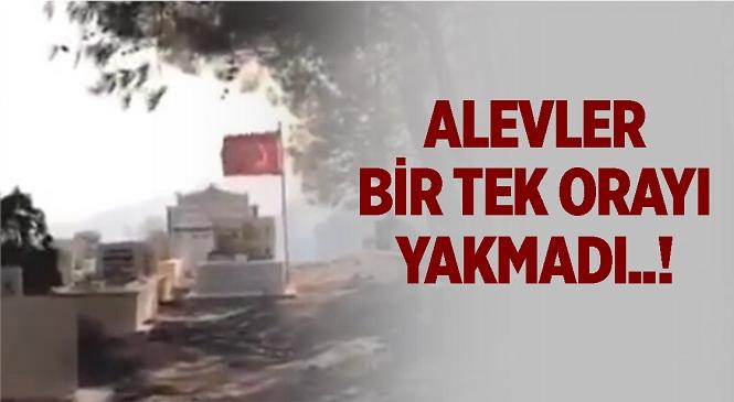 Mersin Silifke'de Çıkan Yangında Mezarlık Yanarken Şehit Kabri ve Türk Bayrağı Zarar Görmedi