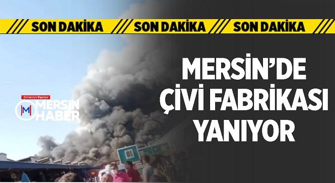 Mersin'in Tarsus İlçesindeki Çivi Fabrikasında Büyük Yangın! Gökyüzüne Yükselen Dumanlar İlçenin Birçok Noktasından Görüldü