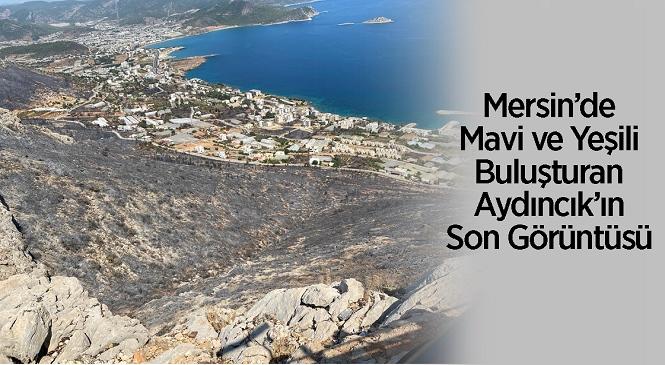 Mersin'in Aydıncık İlçesinde Yangın Sonrası Çekilen Fotoğraf Yürek Yaktı! Yeşilin Rengi Griye Dönmüş…