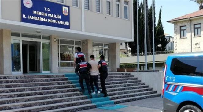 Mersin İl Jandarma Komutanlığından DEAŞ Örgüt Üyesine Yakalama