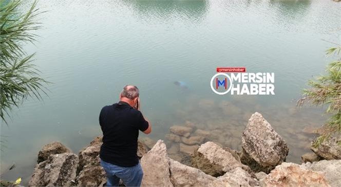 Mersin Tarsus'ta Su da Erkek Cesedi Bulundu