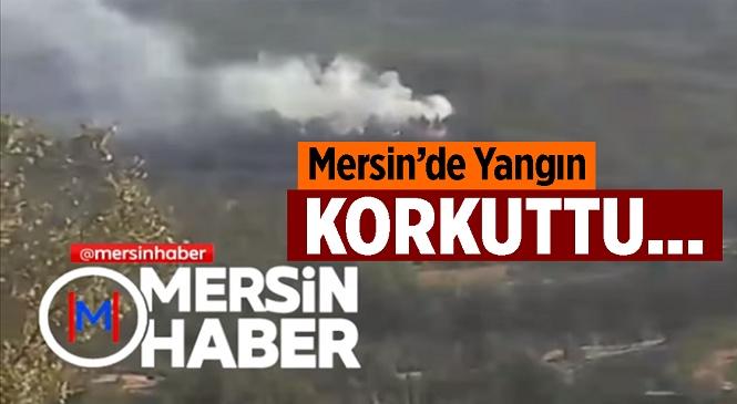 Mersin'in Gülnar İlçesinde Buğday Tarlasında Yangın! Alevler Ormanlık Alana Sıçramadan Söndürüldü