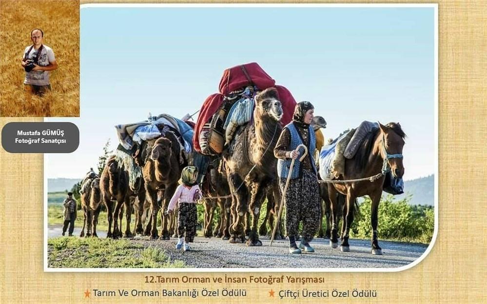 Bakanlığın Yarışmasında Mersinli Fotoğraf Sanatçısı Mustafa Gümüş'ün Büyük Başarısı