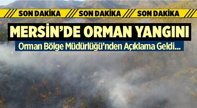 Mersin'in Anamur İlçesinde Orman Yangını! Kısa Sürede Müdahale Edilen Yangının Kontrol Altına Alındığı Duyuruldu