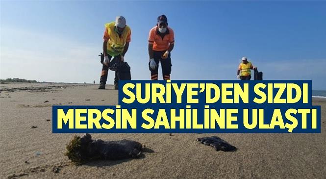 Mersin Büyükşehir Ekipleri, Tarsus Plajında Petrol Atıklarını Temizledi