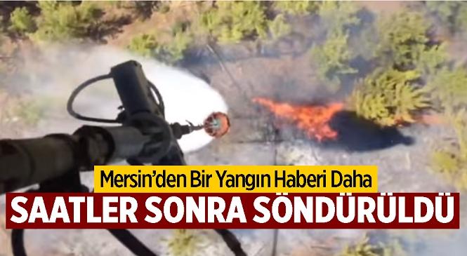 Mersin'in Anamur İlçesinde Orman Yangını Çıktı! Alevler 3 Saat Sonra Kontrol Altına Alındı