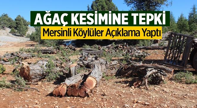 Yaylalık Bölgedeki Ardıç Ağacı Kesimine Vatandaşlardan Tepki! Bir Araya Gelip Basın Açıklaması Yaptılar
