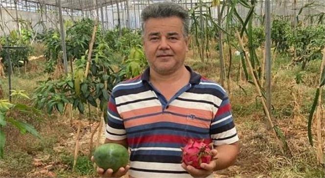 Mersin'in Bozyazı İlçesinde Alternatif Ürün Yetiştiriciliği Artıyor