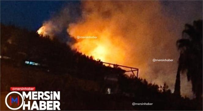 Mersin'de Orman Yangını! Yangın Gece 03.00 Sıralarında Başladı