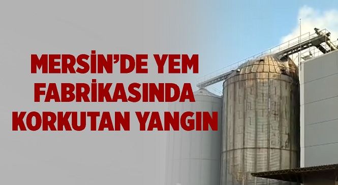 Mersin'in Tarsus İlçesinde Yem Fabrikası Alevlere Teslim Oldu