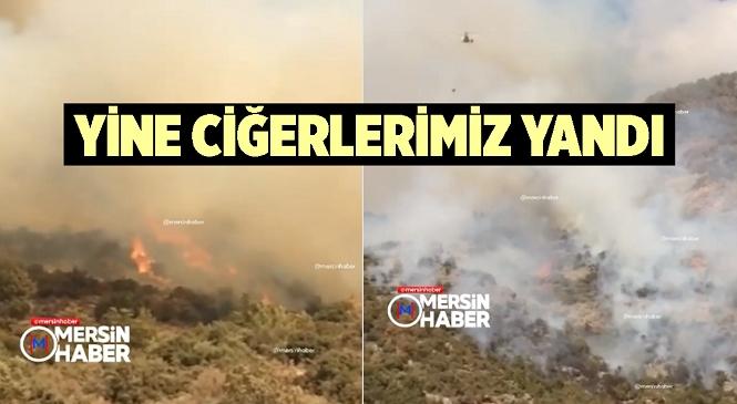 Mersin'in Anamur İlçesinde Orman Yangını Çıktı! Ekiplerin Seferber Olduğu Yangın Kontrol Altına Alındı