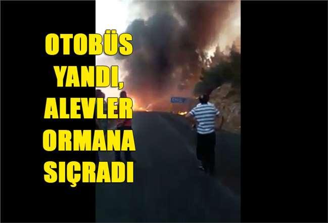 Mersin'de Otobüs Yangını, Ormanlık Alana Sıçradı