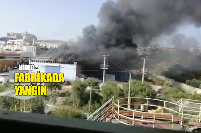 Mersin Organize Sanayinde Fabrika Yangını Videosu