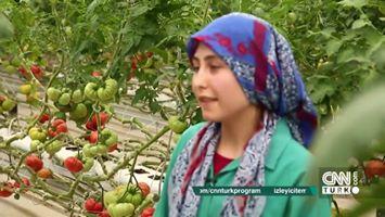 Merak Edilenlerle, Türkiye'nin Yerli Tohum Üretiminde Merak Edilen Her Şey