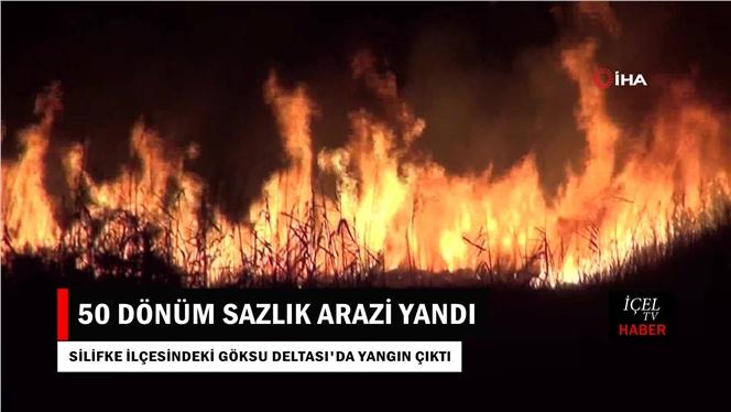 Göksu Deltası'nda Yangın:50 Dönüm Sazlık Arazi Yandı