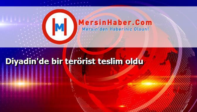 Diyadin'de bir terörist teslim oldu