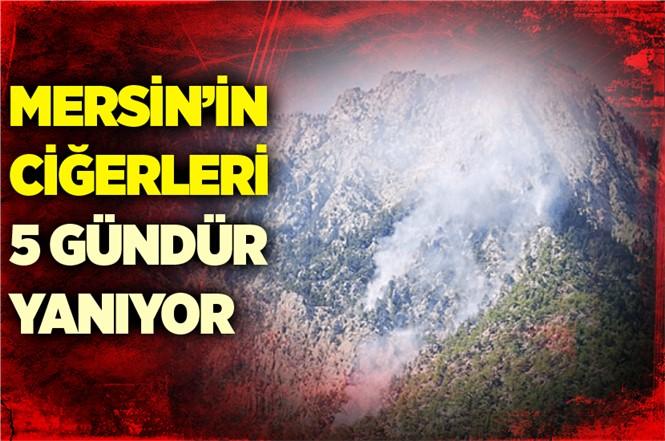 Mersin'in Orman Yangını 5. Gününde
