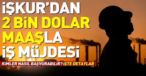 İŞKUR'dan İşsizlere Aylık 2 Bin Dolarla İş İmkanı. İŞKUR'dan Yurt dışında Çalışma İmkanı