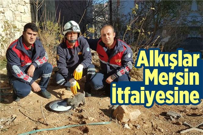 Mersin Gülnar'da Mahsur Kalan Yavru Köpeği İtfaiye Kurtardı