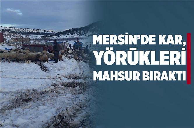 Mersin'in Erdemli İlçesinin Yüksek Kesimlerinde Yörükler Kar Yağışı Nedeniyle Mahsur Kaldı