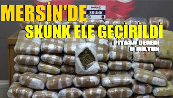 Polisten Mersin'de Müthiş Operasyon, Ele Geçirilenler Arasında 5 Milyon Değerinde Skunk'ta Var