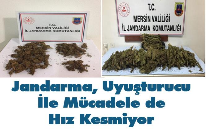 Jandarma Mersin Akdeniz, Silifke ve Muz İlçelerinde Uyuşturucu İle Mücadele de Hız Kesmiyor