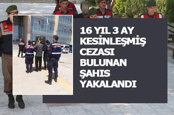 12 Ayrı Suçtan Kaydı Bulunan Şahıs Jandarma Tarafından Erdemli Tömük Mahallesinde Yakalandı