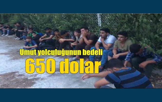 Kaçak Yolla Suriye'den İstanbul'a Götürülmek İçin 650 Dolar Veren 54 Kişi Yakalandı