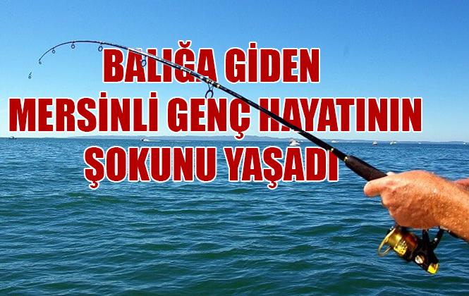 Mersin'de Bir Balıkçı Olta ile Köpek Balığı Yakaladı