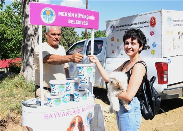 Büyükşehir, Şaymana'da Sahipsiz Hayvanları Unutmadı