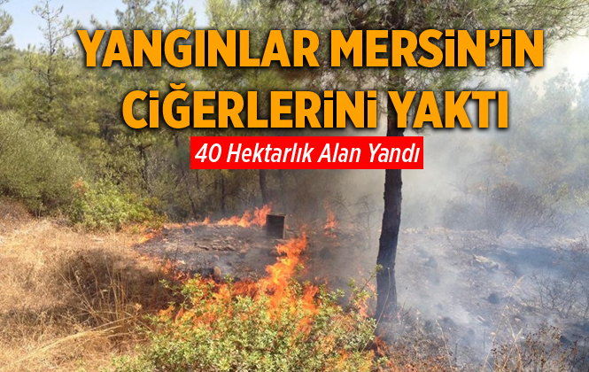 Mersin'de Orman Yangınlarında 40 Hektarlık Alan Yandı