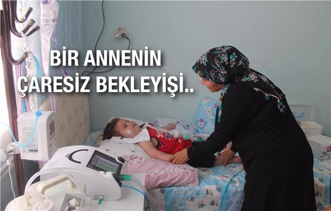 Mersin Tarsus Şahin Mahallesinde Yaşayan Çaresiz Anne, Küçük Oğlu Ömer İçin Yardım Bekliyor!