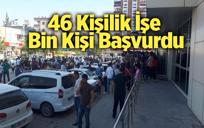 Tarsus'ta 46 kişilik iş için bin kişi başvurdu