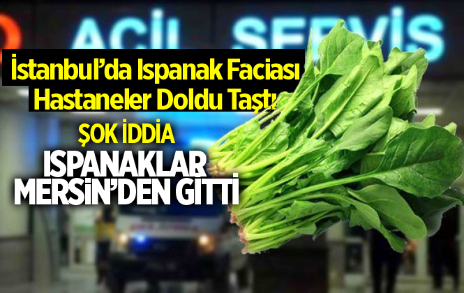 İstanbul'da Zehirlenmeye Neden Olan Ispanaklar Mersin'den Gitti İddiası